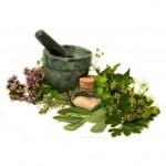 medicinal-herbs_320x320